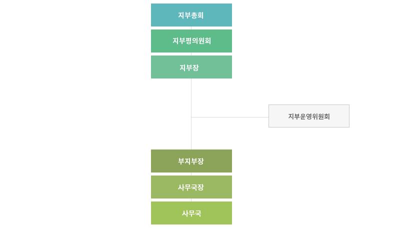 organization5